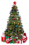Feng Shui Advice for Placing the Christmas Tree